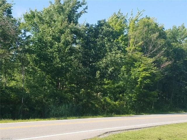 V/L Kinsman Rd, Newbury, OH 44065 (MLS #4016860) :: Keller Williams Chervenic Realty
