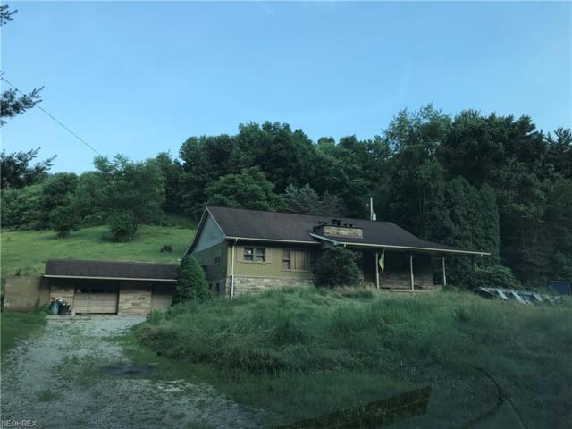 6543 Waterworks Hill Rd SE, Uhrichsville, OH 44683 (MLS #4017020) :: PERNUS & DRENIK Team