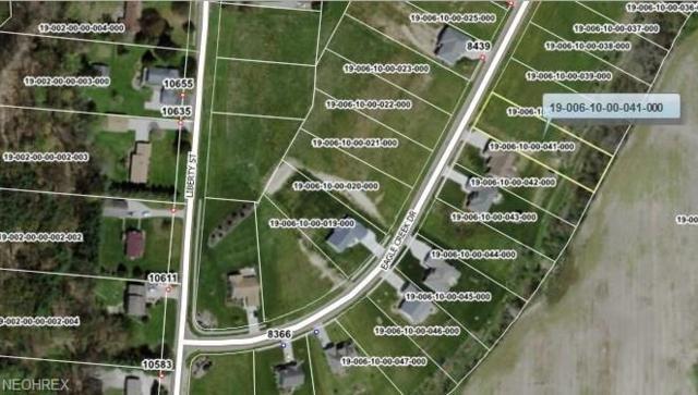 8430 Vl41 Eagle Creek Dr, Garrettsville, OH 44231 (MLS #4017368) :: PERNUS & DRENIK Team