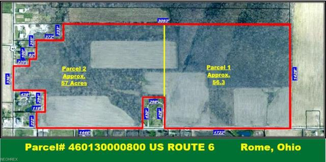Us Route 6, Andover, OH 44003 (MLS #4017566) :: PERNUS & DRENIK Team