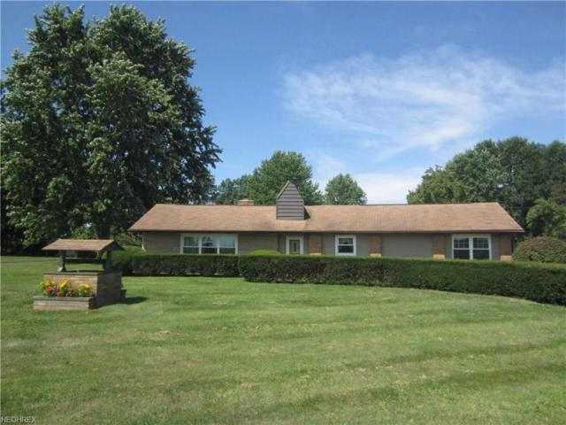 8920 W Ridge Rd, Elyria, OH 44035 (MLS #4017646) :: The Crockett Team, Howard Hanna