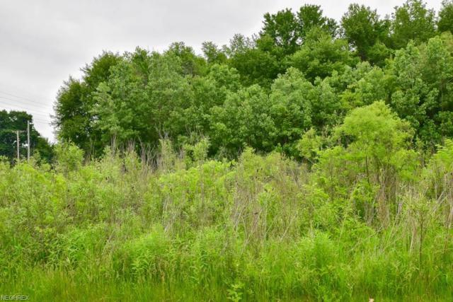 0000 Karla Dr, Clinton, OH 44216 (MLS #4018242) :: Tammy Grogan and Associates at Cutler Real Estate