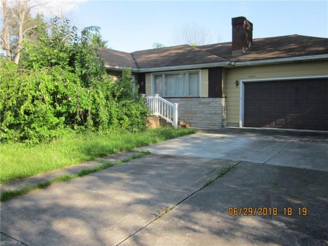1041 Walker Mill Rd, Youngstown, OH 44514 (MLS #4018410) :: The Crockett Team, Howard Hanna