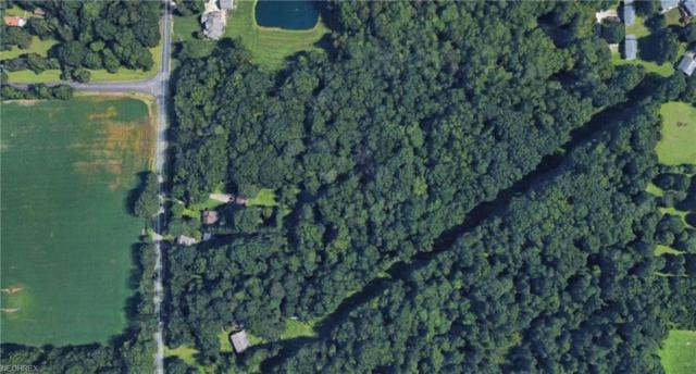 V/L Portage Line Rd, Akron, OH 44312 (MLS #4018518) :: RE/MAX Trends Realty