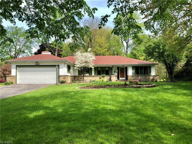 1317 Burlington Rd, Cleveland, OH 44118 (MLS #4018596) :: The Crockett Team, Howard Hanna