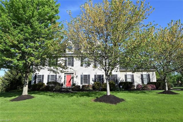 7428 N Marblehead Rd, Hudson, OH 44236 (MLS #4018849) :: Tammy Grogan and Associates at Cutler Real Estate