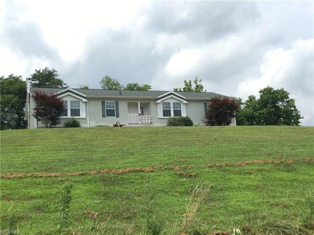 5770 State Route 530, Lowell, OH 45744 (MLS #4019186) :: The Crockett Team, Howard Hanna