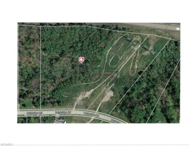 V/L Bainbridge Rd, Solon, OH 44139 (MLS #4019237) :: The Crockett Team, Howard Hanna