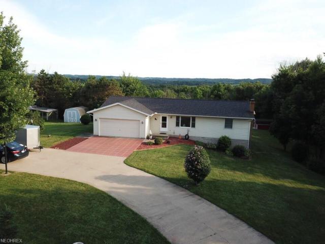 4174 Avon Rd NE, Carrollton, OH 44615 (MLS #4019441) :: The Crockett Team, Howard Hanna