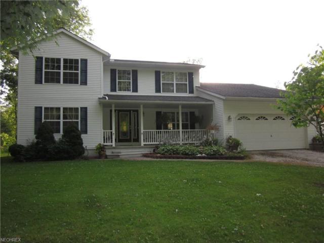 1093 Watson Rd, Deerfield, OH 44411 (MLS #4019521) :: Keller Williams Chervenic Realty