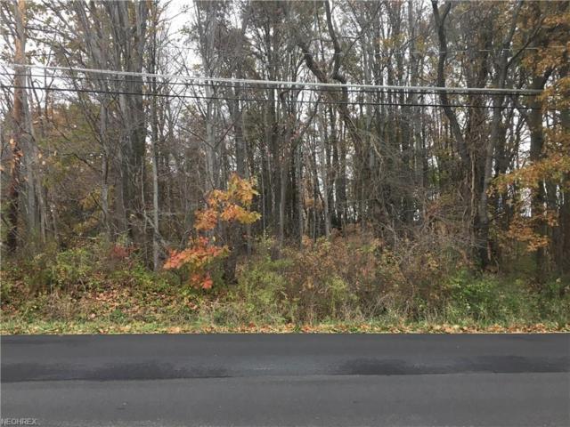 Jarvis Rd, Akron, OH 44319 (MLS #4019713) :: Keller Williams Chervenic Realty