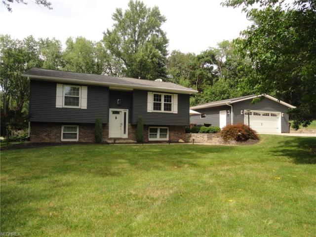 379 Perry Rd, Tallmadge, OH 44278 (MLS #4019752) :: RE/MAX Trends Realty