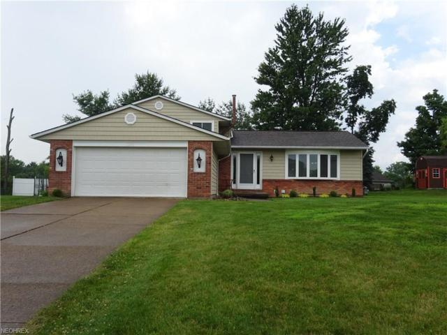3272 Perl Ct, North Royalton, OH 44133 (MLS #4019774) :: The Crockett Team, Howard Hanna