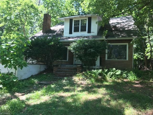 37641 & 37649 Euclid Ave, Willoughby, OH 44094 (MLS #4020121) :: The Crockett Team, Howard Hanna