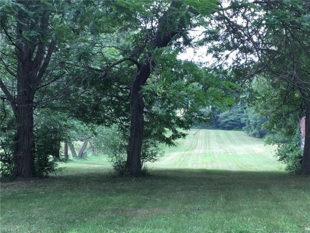 1543 Martin Rd, Mogadore, OH 44260 (MLS #4020255) :: RE/MAX Trends Realty