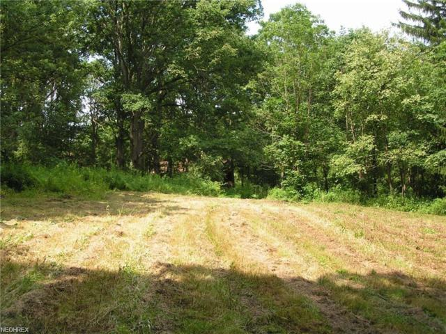 14125 E East Liverpool Rd, Lisbon, OH 44432 (MLS #4020588) :: RE/MAX Valley Real Estate