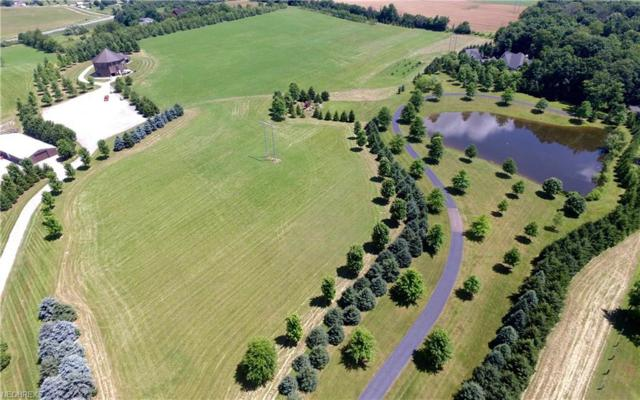 5553 Richville Dr SW, Navarre, OH 44662 (MLS #4020737) :: RE/MAX Trends Realty