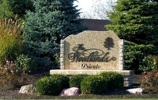 4361 E Laurel Ridge Dr, Port Clinton, OH 43452 (MLS #4020951) :: PERNUS & DRENIK Team