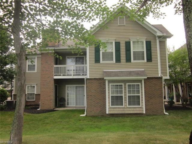 3328 Lenox Village Dr #123, Fairlawn, OH 44333 (MLS #4021477) :: The Crockett Team, Howard Hanna
