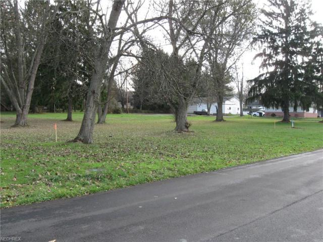 800 Main St, Columbiana, OH 44408 (MLS #4021638) :: The Crockett Team, Howard Hanna