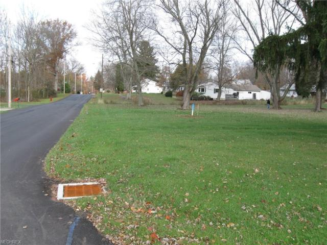 810 S Main St, Columbiana, OH 44408 (MLS #4021647) :: RE/MAX Valley Real Estate