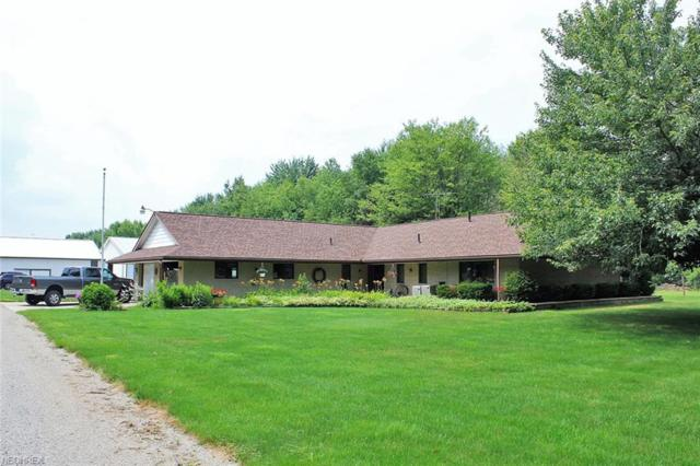 590 W Nimisila Rd, New Franklin, OH 44319 (MLS #4021749) :: The Crockett Team, Howard Hanna