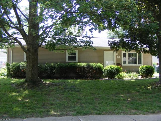 735 Case Ave, Elyria, OH 44035 (MLS #4022397) :: The Crockett Team, Howard Hanna