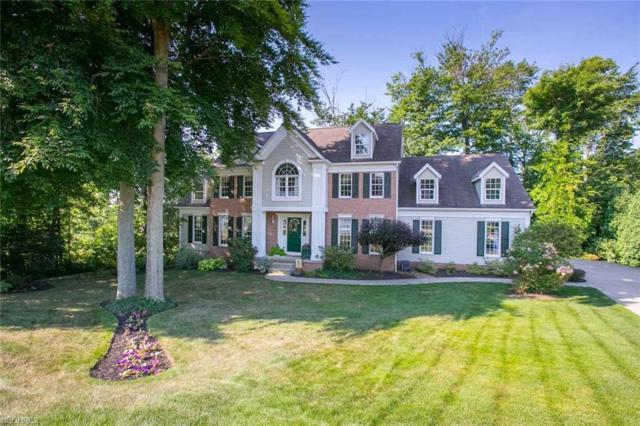 906 Lawrence Dr, Wadsworth, OH 44281 (MLS #4022472) :: RE/MAX Trends Realty