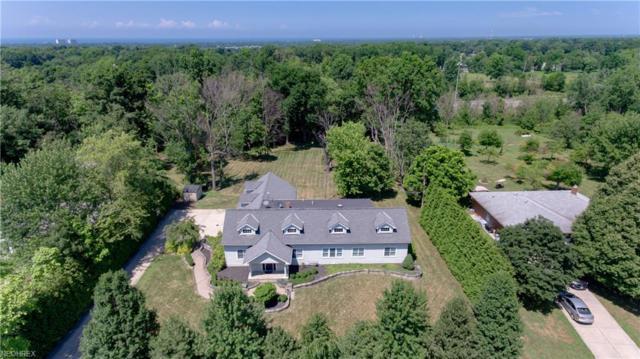 28835 Eddy Rd, Willoughby Hills, OH 44092 (MLS #4022725) :: The Crockett Team, Howard Hanna