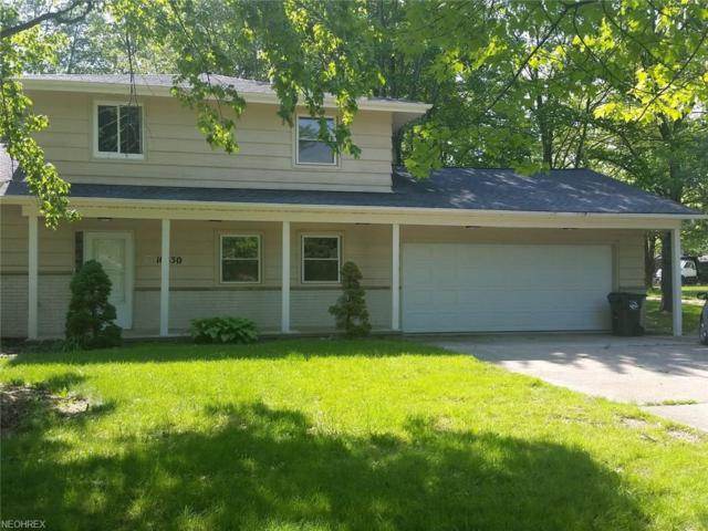16830 State Rd, North Royalton, OH 44133 (MLS #4022966) :: Keller Williams Chervenic Realty