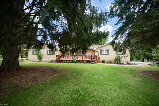 3130 Paradise Ave, Canfield, OH 44406 (MLS #4023163) :: The Crockett Team, Howard Hanna