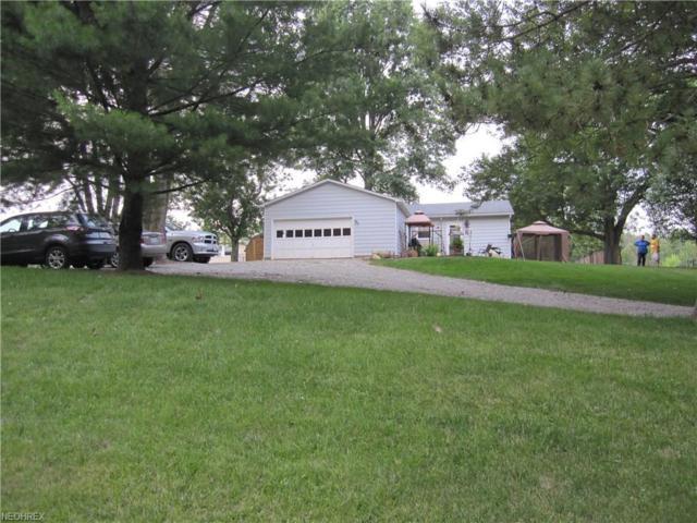 3679 W West Salem, Burbank, OH 44214 (MLS #4023226) :: The Crockett Team, Howard Hanna