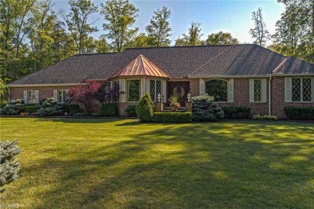 10885 Scranton Woods Trl, Newbury, OH 44065 (MLS #4023352) :: Keller Williams Chervenic Realty