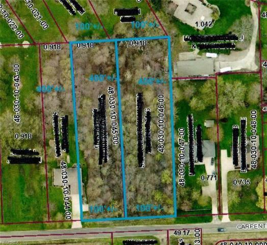VL Carpenter Rd, Saybrook, OH 44004 (MLS #4023524) :: The Crockett Team, Howard Hanna