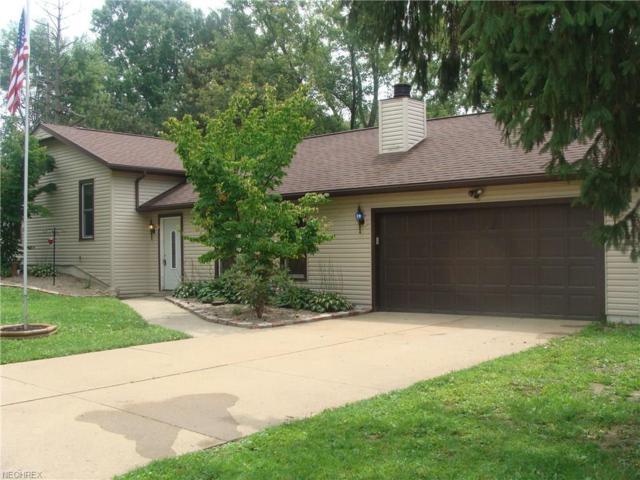 2511 Smithville Western, Wooster, OH 44691 (MLS #4024341) :: The Crockett Team, Howard Hanna