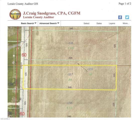 8689 Oberlin Rd, Elyria, OH 44035 (MLS #4024806) :: The Crockett Team, Howard Hanna