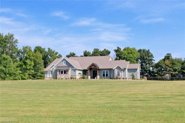 1221 Riffel Rd, Wooster, OH 44691 (MLS #4025358) :: The Crockett Team, Howard Hanna
