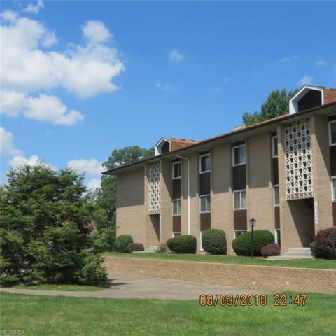 10408 N Church Dr #423, Cleveland, OH 44130 (MLS #4025393) :: The Crockett Team, Howard Hanna
