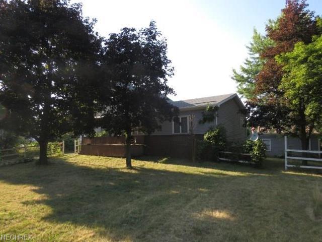 1205 Palmetto Ave, Akron, OH 44306 (MLS #4025483) :: The Crockett Team, Howard Hanna