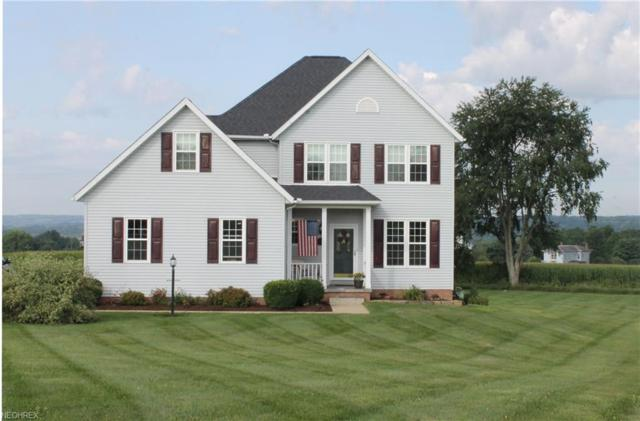 1875 Sadie Lane, Wooster, OH 44691 (MLS #4025633) :: The Crockett Team, Howard Hanna