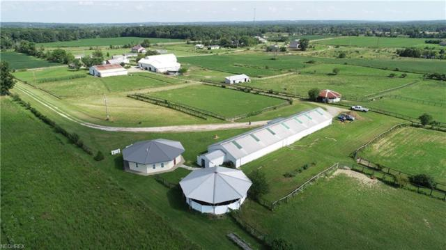 8750 Congress Rd, Lodi, OH 44254 (MLS #4025705) :: The Crockett Team, Howard Hanna