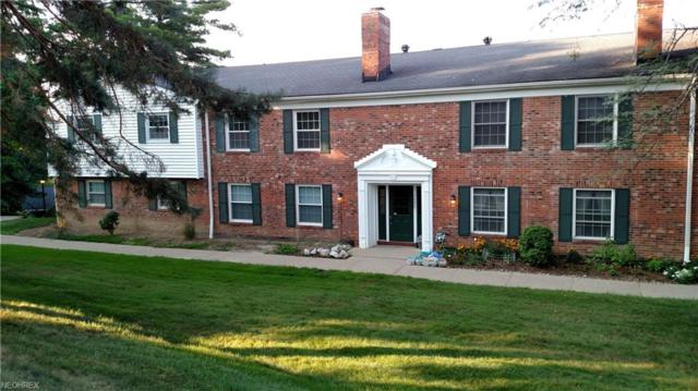 7055 Carriage Hill Dr #201, Brecksville, OH 44141 (MLS #4025834) :: RE/MAX Trends Realty
