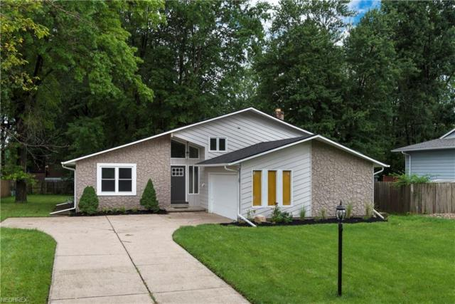 6530 Nicoll Dr, North Ridgeville, OH 44039 (MLS #4026456) :: The Crockett Team, Howard Hanna