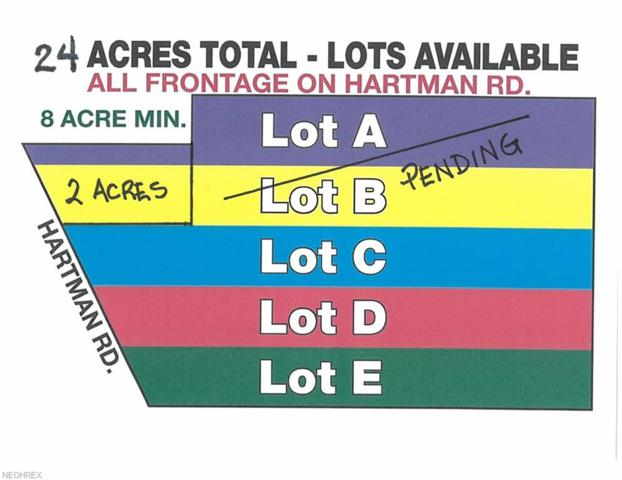 V/L Hartman Rd, Wadsworth, OH 44281 (MLS #4026680) :: The Crockett Team, Howard Hanna