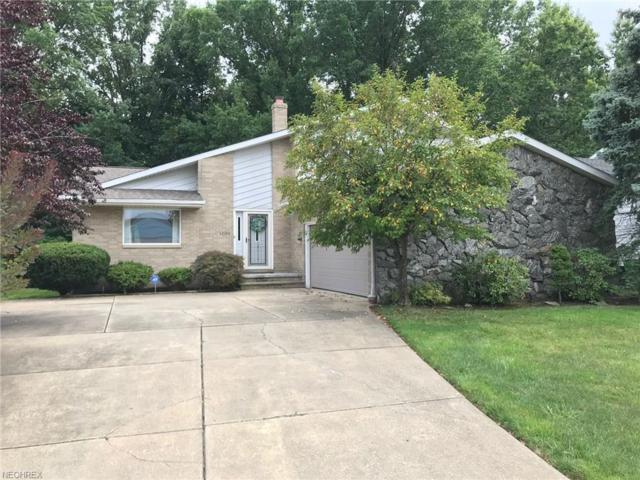 13200 Milo Rd, Garfield Heights, OH 44125 (MLS #4026704) :: The Crockett Team, Howard Hanna