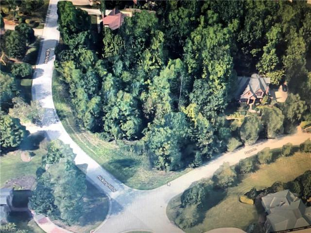 Hickory Hill Dr, Poland, OH 44514 (MLS #4026736) :: RE/MAX Valley Real Estate