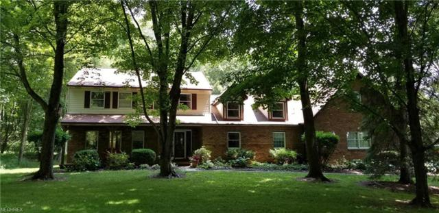 465 Crystal Lake Rd, Akron, OH 44333 (MLS #4026836) :: RE/MAX Edge Realty
