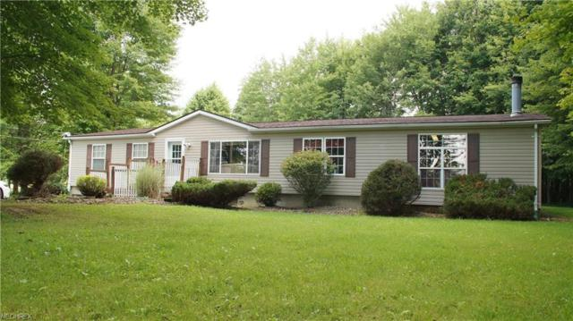 1127 York St, Orwell, OH 44076 (MLS #4026864) :: RE/MAX Valley Real Estate
