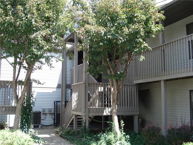 5237 Lake Rd W #1023, Ashtabula, OH 44004 (MLS #4026927) :: Keller Williams Chervenic Realty