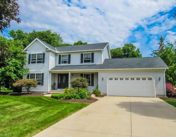 3322 Shady Pine Pl, Perry, OH 44081 (MLS #4026981) :: PERNUS & DRENIK Team